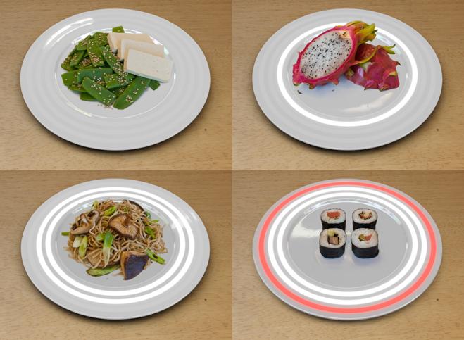 fukushima_plate-01
