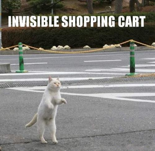 invisible-01