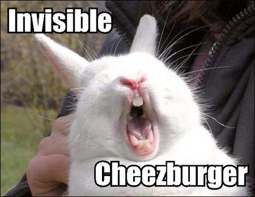 invisible-02