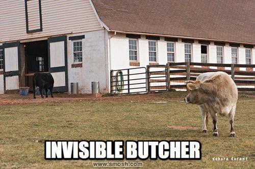 invisible-08