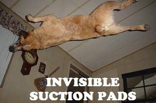 invisible-11