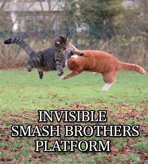 invisible-19