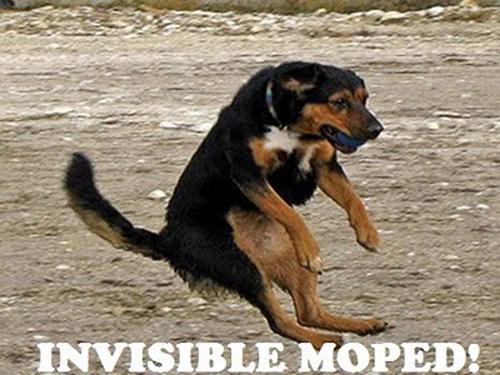 invisible-20